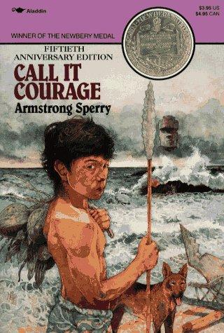 Download Call it courage