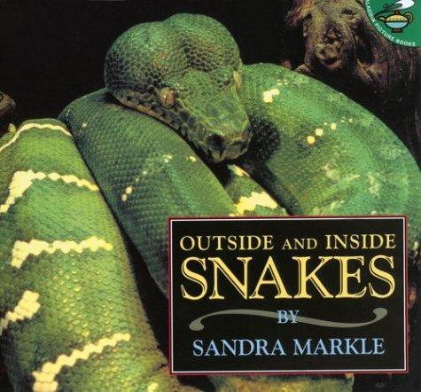 Download Outside and Inside Snakes