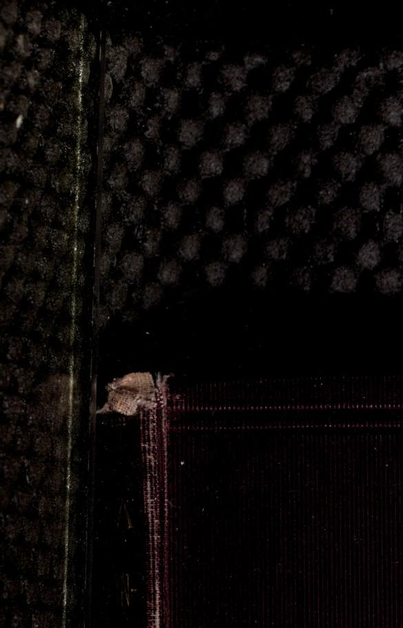 The diary of a resurrectionist 1811-1812 by James Blake Bailey