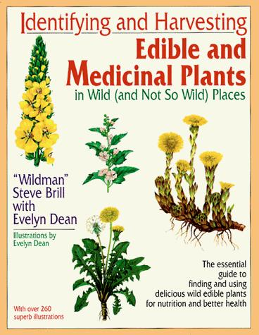 Identifying and harvesting edible and medicinal plants in wild (and not so wild) places by Steve Brill